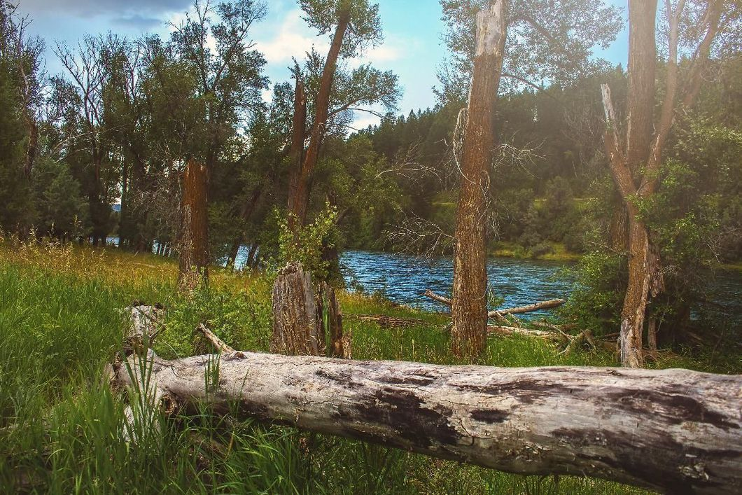 125+ Acres of River Front Property