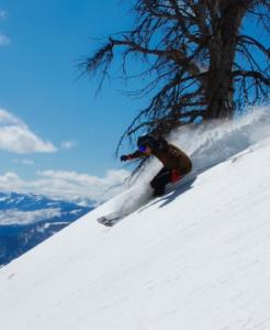 February ski report Idaho   Dakri Bernard Realty Group