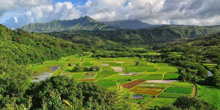 Kauai Real Estate Zoning