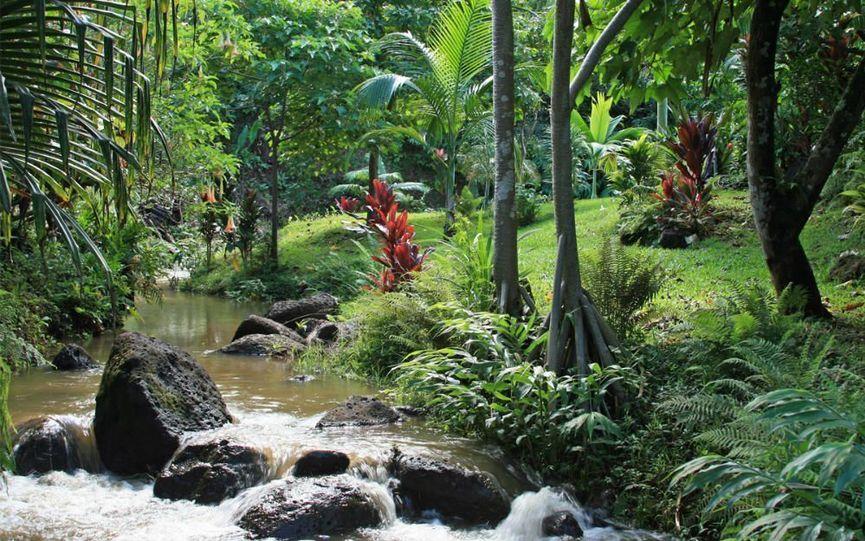 Princebille Botanical Garden River