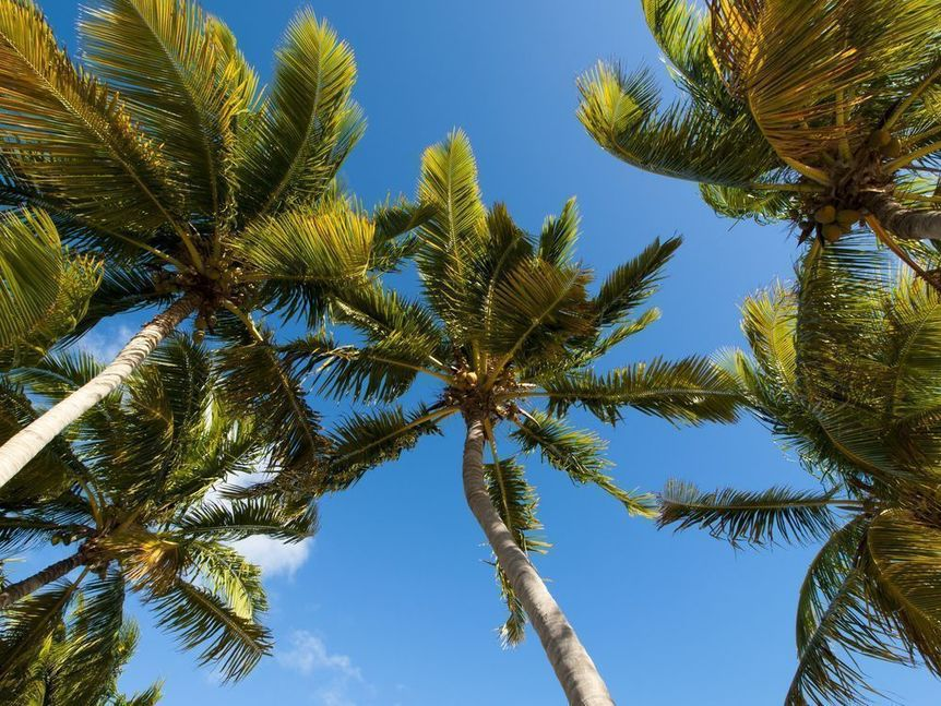 Haverhill in Palm Beach County, Florida