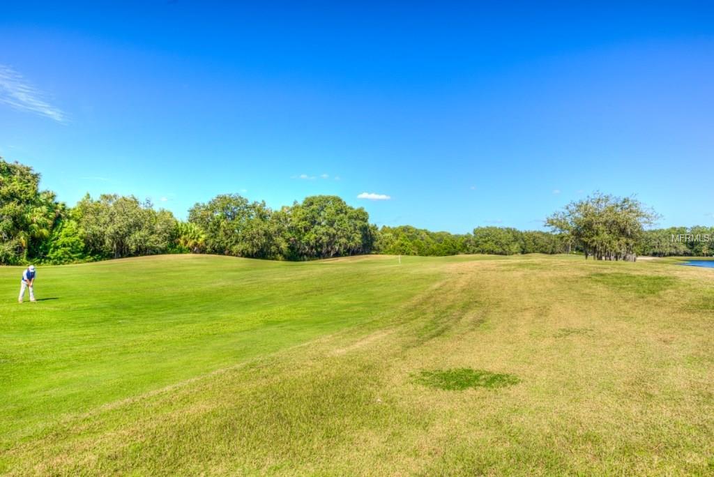 greenfield plantation