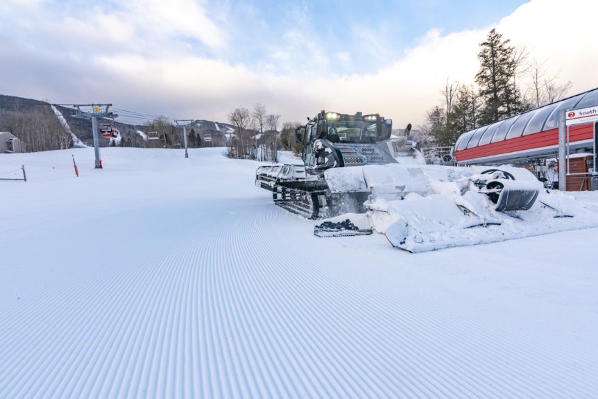 Groomer in South Ridge