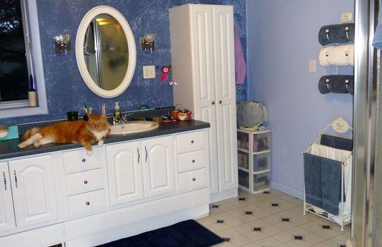 Upstairs Bathroom (2)