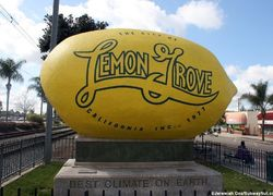 Lemon Grove real estate