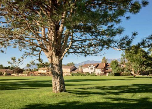 Country Club / Palmer Park