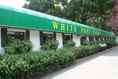 White Post Farms