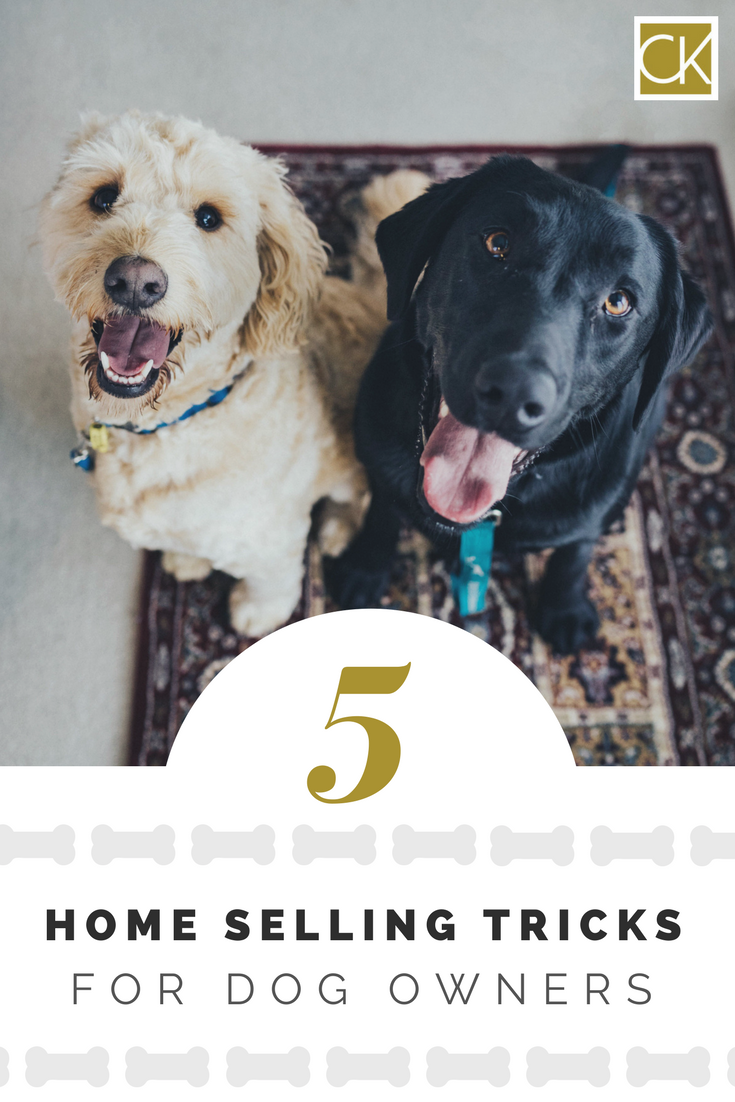 5 Home Selling Tricks for Dog Owners