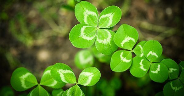 Home Buyers-Don't Let Your Luck Run Out