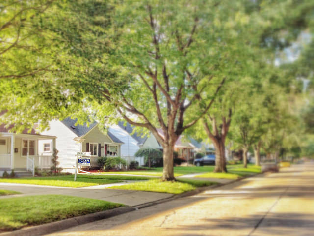 Neighborhood Feature Buyers Want In Oakland County Tree lined Street
