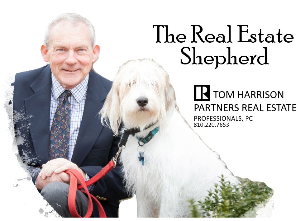 Tom Harrison, Real Estate Sheperd