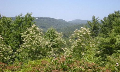 1704-highlands-mountain-club-highlands-nc-01
