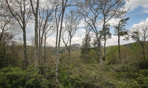644-n-big-bear-pen-highlands-nc-10