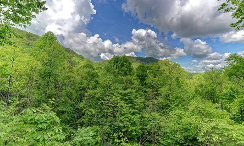67-aster-trail-cullowhee-nc-21