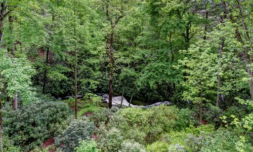 675-wild-river-road-cashiers-nc-35