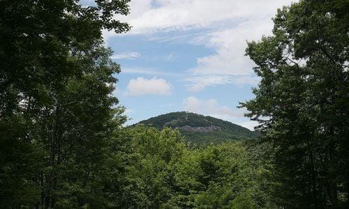 515-Tall-Cedars-Glenville-NC-25