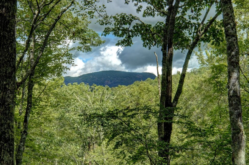 168-Sassafras-Court-View-Highlands-NC-01