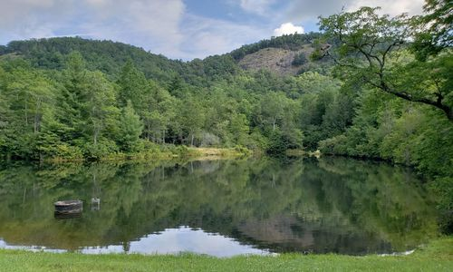Lot-18-Branchwater-Trail-Glenville-NC-08