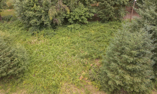 Vancouver Land For Sale