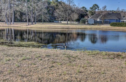 Plantation Landing - Pond