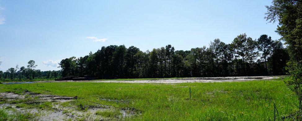 The Landing at Lewis Creek