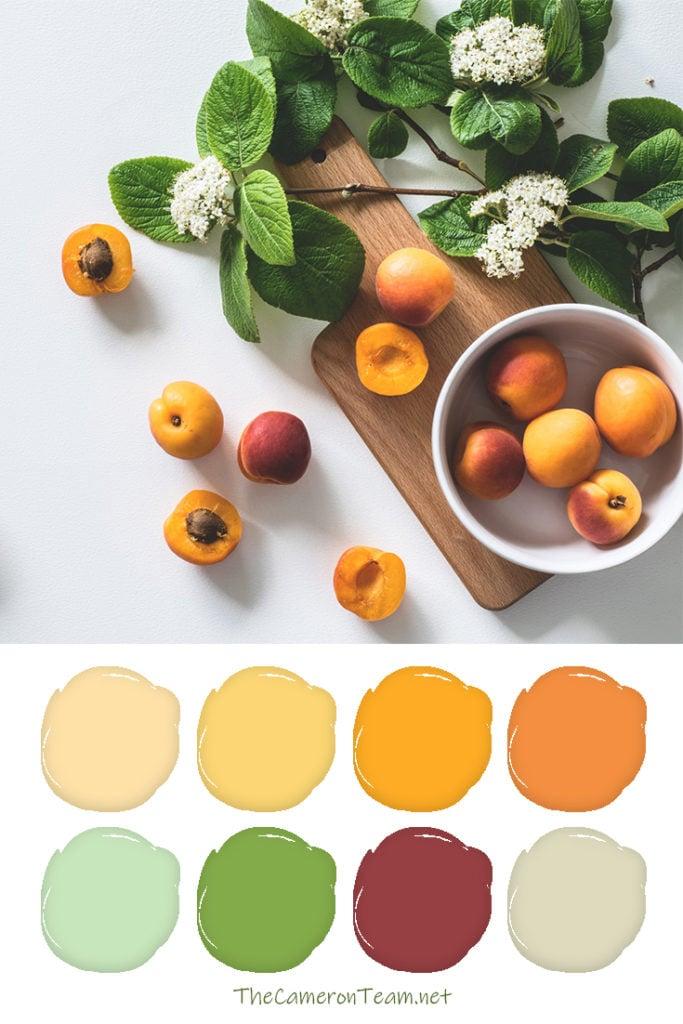 Apricot Paint Color Palette - The Cameron Team