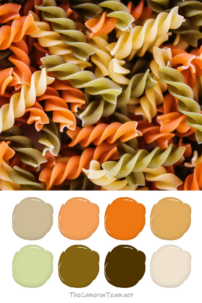 Spiral Vegetable Pasta Paint Color Palette - The Cameron Team
