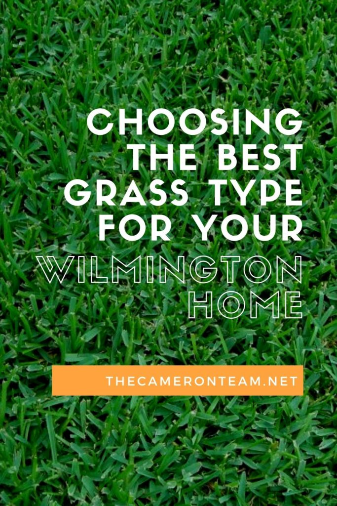 Choosing the Best Grass Type for Your Wilmington Home