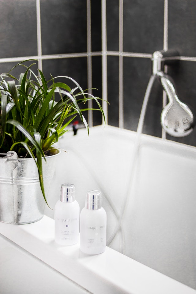 Bathroom Greenery