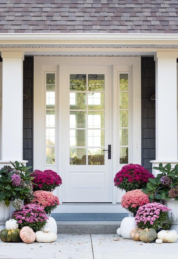 Purple Mum Fall Porch - Lily Pad Cottage