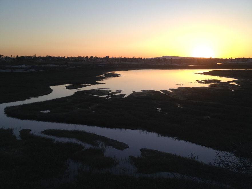 los-cerritos-wetlands