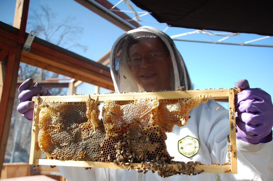 long-beach-beekeepers-7