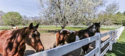 Goodlettsville Farms