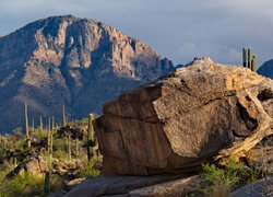 Rancho Vistoso, Honeybee Canyon, Oro Valley, Az
