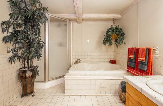 WEB_Downstairs Bath_1