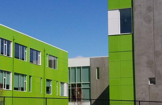 licton school green ok