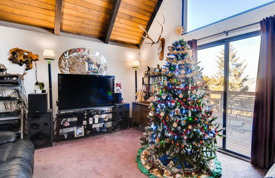 565-elk-valley-drive-evergreen-small-005-15-living-room-666×443-72dpi
