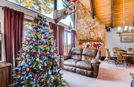 565-elk-valley-drive-evergreen-small-006-2-living-room-666×443-72dpi