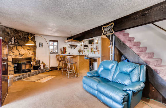 565-elk-valley-drive-evergreen-small-021-21-lower-level-family-room-666×443-72dpi