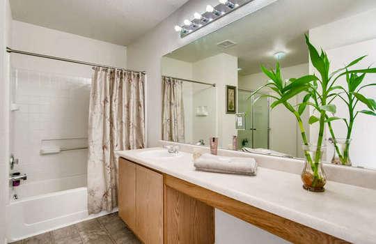 21612 E 55th Ave Denver CO-small-016-13-2nd Floor Master Bathroom-666×444-72dpi
