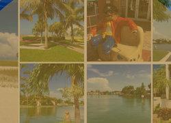 Top Realtor St Petersburg FL Avalon Group