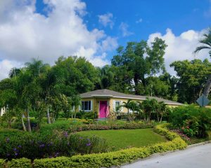 Yellow cement home built in 1954 with a hot pink front door. There is a lush green lawn and manicured hedges in many shades of green.
