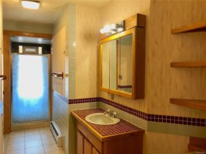 Bathroom with shower stall and vanity with red tile counter