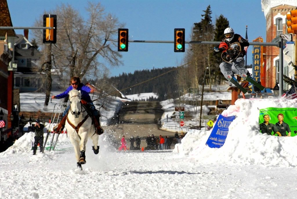 A white horse and rider gallop down a street with a skier in tow. Skier appears to be at peak height after coming off a jump. The traffic light is green, for what it's worth.